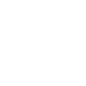 Site Templating caliper icon